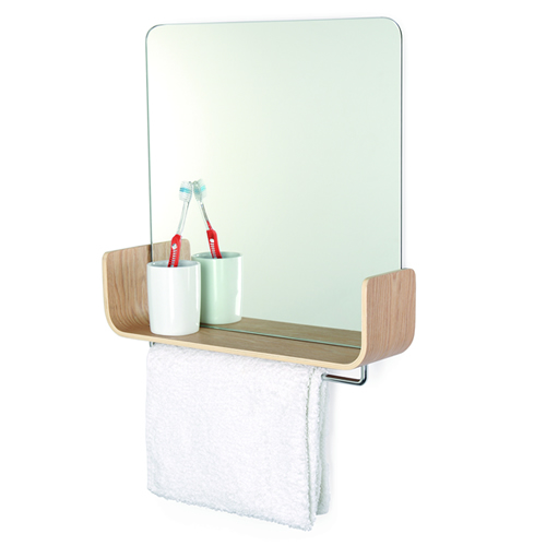 Mirror with storage shelf and hanging rail