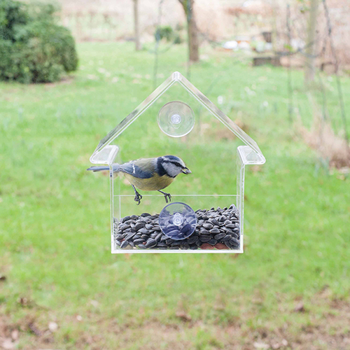 Window Mount Bird Feeder